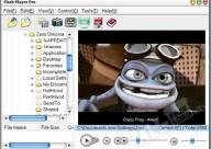 Macromedia Flash Player
